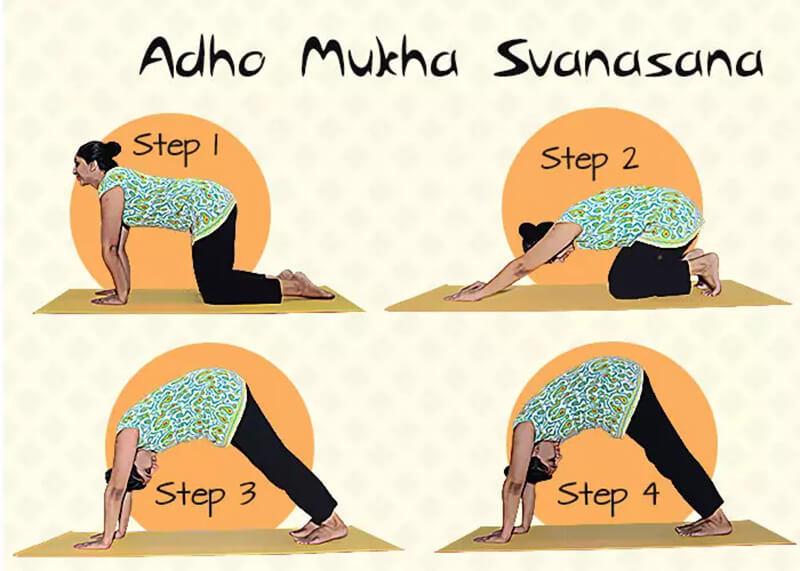 Adho Mukha Svanasana - Tư thế chó úp mặt