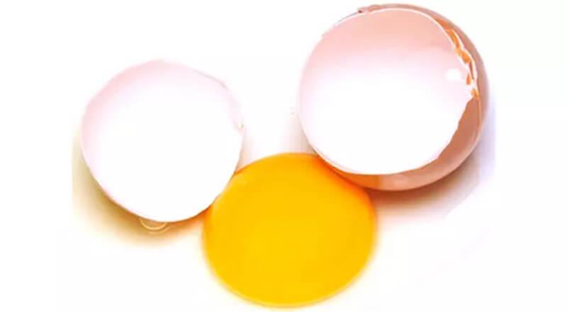 Trứng / Gà