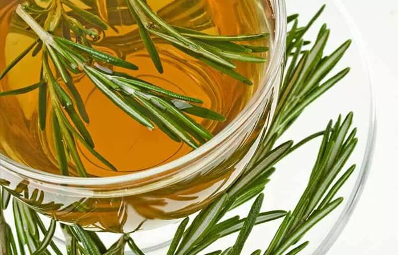 Nước hương thảo giúp mọc tóc (Nước xả tóc Rosemary)