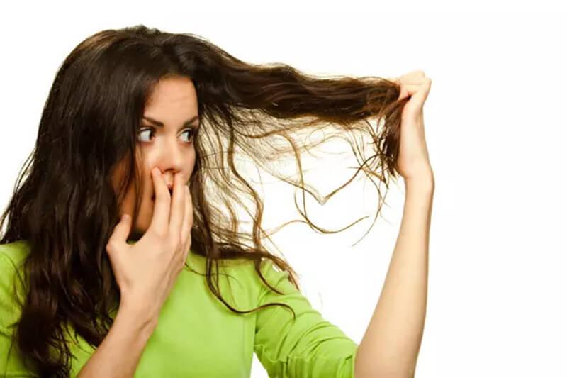Tóc khô và thiếu sức sống