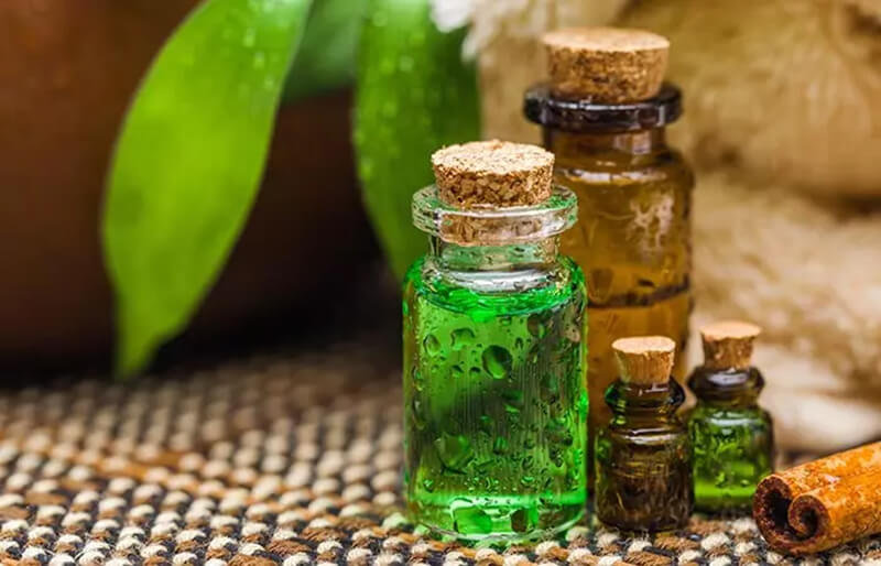 Kết hợp dầu thầu dầu với dầu cây trà