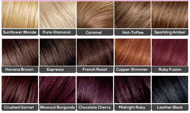 Biểu đồ màu tóc của thương hiệu L'Oreal Feria