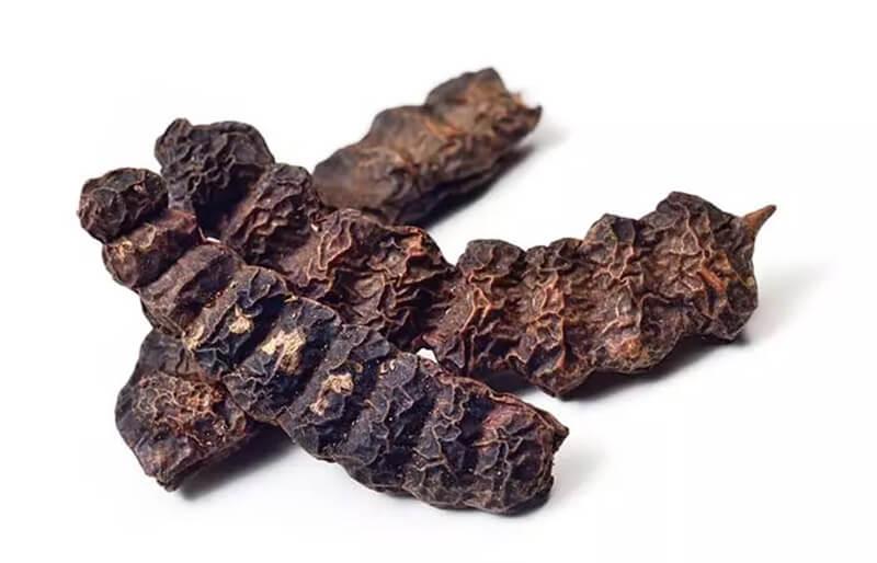 Bột Shikakai (keo lá me) và dầu cỏ mực
