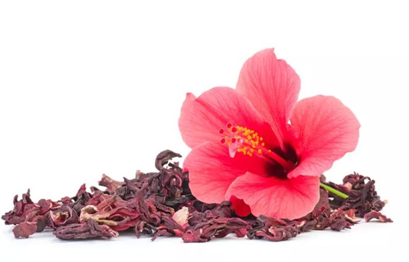 Hoa Gooseberry và hoa dâm bụt Ấn Độ cho tóc bạc