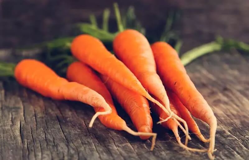 Lợi ích của cà rốt đối với sự phát triển của tóc